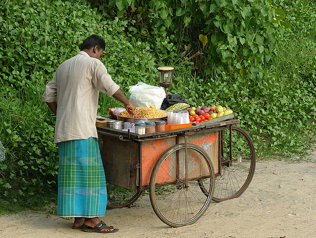 food cart india travel
