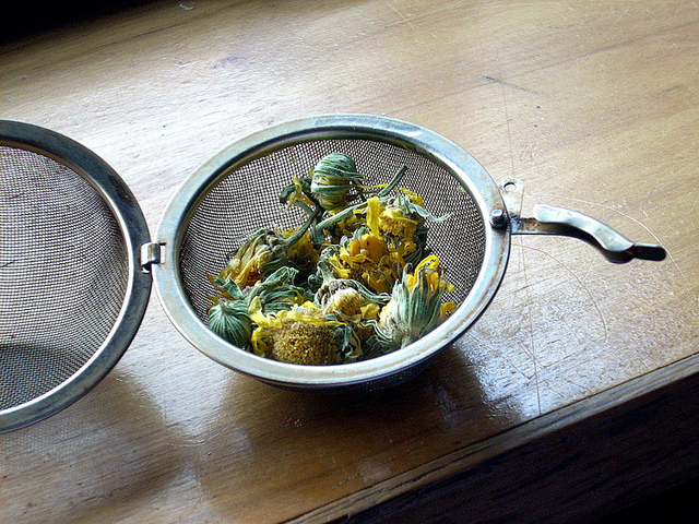 calendula herb tea spring flower health drink