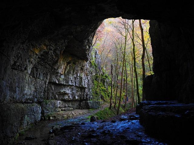 Pixabay: https://pixabay.com/en/falkensteiner-cave-cave-caves-portal-767573/