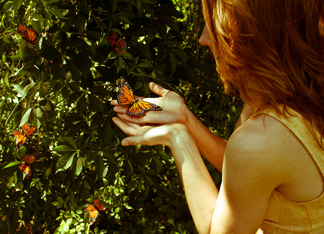 girl butterfly nature let go friend