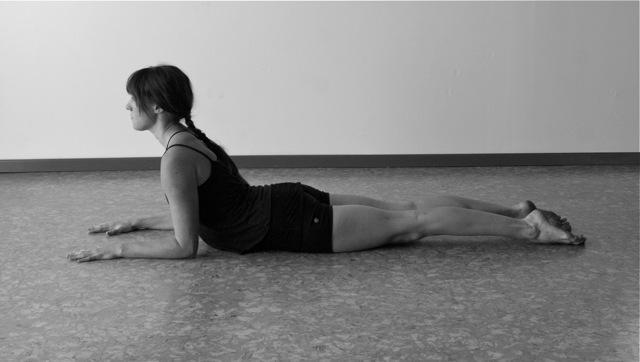 yoga asana sphynx