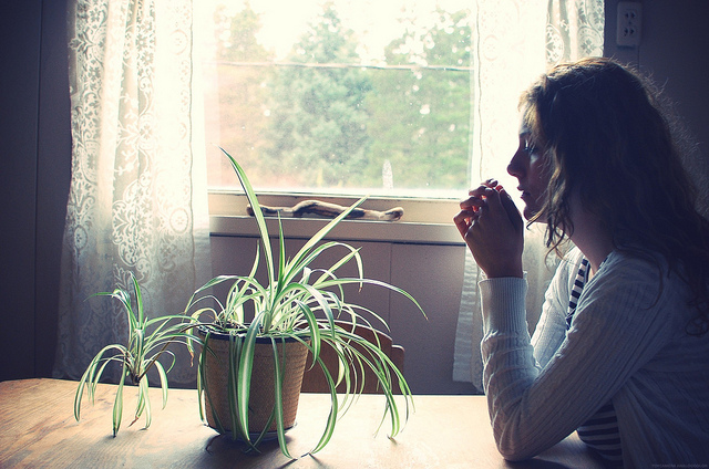 plant focus think meditation silence home quiet girl