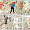 elephant hearts Tintin (worthwhile reading for young punks).