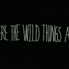 Where the Wild Things Are: Movie Trailer! Beautiful.