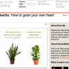 Three essential houseplants for clean indoor air. [Kamal Meattle on TED video, via GreenUpgrader ]