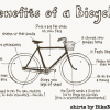 If you want to Bicycle Every Day, here are the 7 Things you Need.