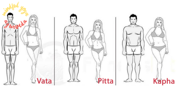 Your Body Type And Ayurveda Doshas Vata Kapha And Pitta Elephant Journal