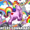 Buddhist Haters Gonna Hate!