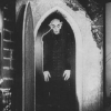 David Sparenberg: NOSFERATU, pathology of the undead, a monologue.