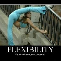 Whether in Yoga or Life, we need to Balance Strength & Flexibility.