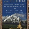 Book review: In the Shadow of the Buddha (Matteo Pistono)