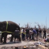 Circus Elephant helps Joplin: Video.
