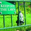 KEEP OFF MY LAWN, chemicals!