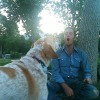 How to Communicate with Your Dog (VIDEO)