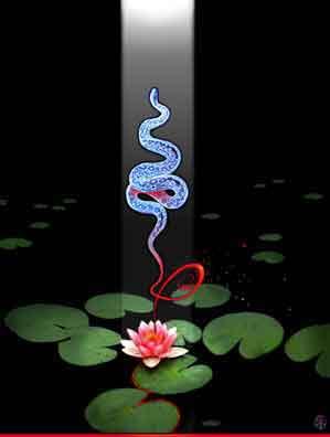 Kundalini Awakening: A Personal Journey.
