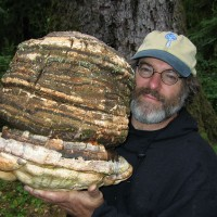 "Paul Stamets: Mushrooms as medicine, ""thinking membranes"", & the answer to basically everything. {Bioneers}"