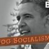 White House Correspondents' Dinner Fake Dog SuperPAC Ad.