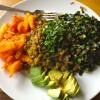 What is a Yogi Diet?