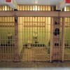 Lessons from the Inside: Choice and Freedom Behind Bars. ~ Kelly Kaiana