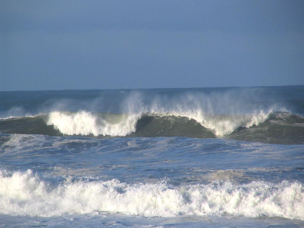Vinyasa Yoga Sequence Cresting The Wave Tracy Johnson