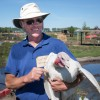 Is a Pastured Turkey Worth All That?