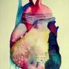 Understanding the Sensitive Heart.