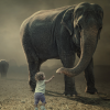 Why I Write for elephant. ~  Michelle Marchildon