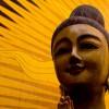 A Tibetan Reincarnation that Suddenly Found Itself as a Woman.