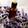 10 Reasons Essential Oils Kick Ass.