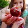 10 Ways to Make Life Juicy.