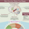 Exactly how Exercising turns on our Happiness. {Infographic}