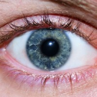 Windows to the Soul: The Best Remedies for Healthy Eyes.