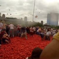 100,000 Pounds of Tomatoes: Food fight Anyone? ~ Jennifer Moore