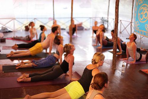 Help! My Yoga Class Just Got Hijacked. ~ Katherine Austin ...