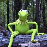 Kermit the Frog Takes the ALS Ice Bucket Challenge. {Video}