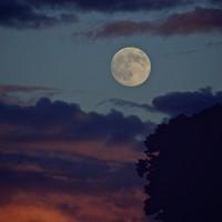What it Feels like to be Sensitive on a Full Moon. ~ Carolyn Riker.