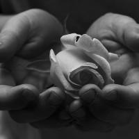 Un Amor Fugaz. {Poema}