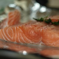 You May Never Eat Wild Salmon Again. Here's Why.