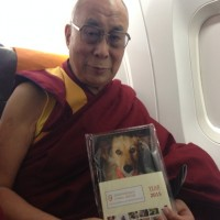 The Dalai Lama is My Neighbor.