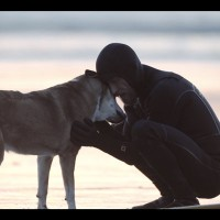 Denali: A Goodbye to a Dog's Best Friend. {Video}