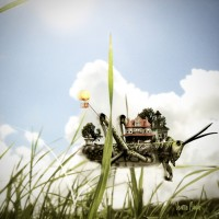 I am not a Humble Grasshopper. {Poem}