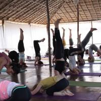 Secrets Revealed: Class Standards for Yoga Studios.