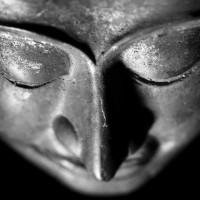 A 10 Step Journey Into Buddhahood.