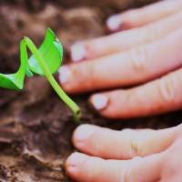 3 Simple Ways to Be Nurturing.