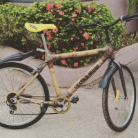 The Genius of the Bamboo Bicycle--Empowering Ghanaian Women. {Video}