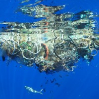 Why Plastic is Overtaking the Oceans & What that Means for Us.