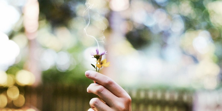 flowers burn let go smoke