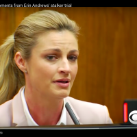Erin Andrews and the Blame Game.