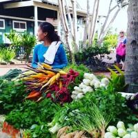 Farmer's Markets in Kauai: Delicious Sustainability.