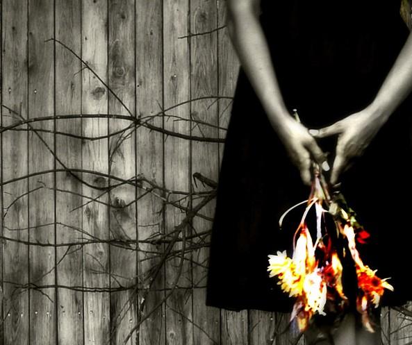 laura betancourt/Flickr
